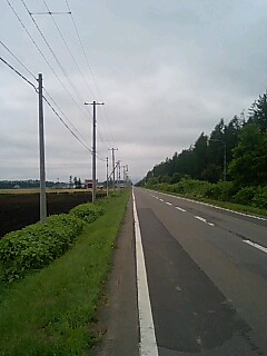 t*[旅] 24k 日本一の防風林
