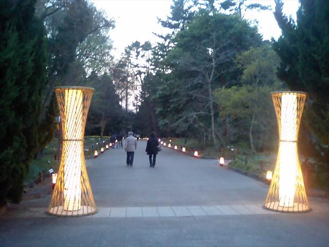 t*[旅] 植物園