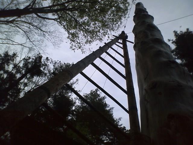 [御柱祭]春宮二