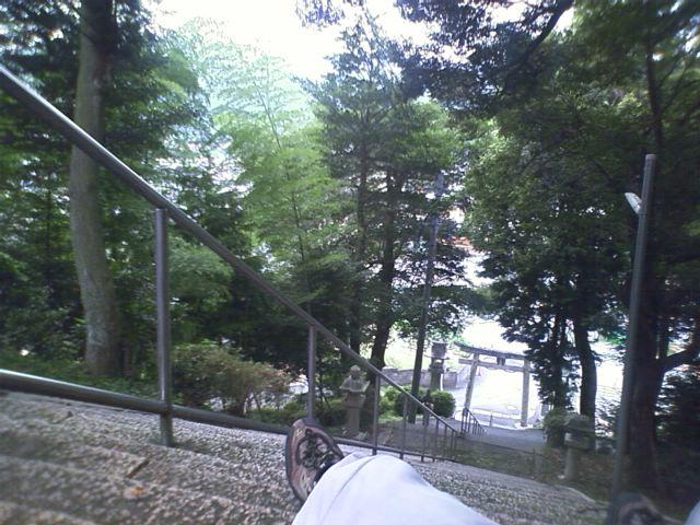 中領八幡宮 参道の階段のおどりばで昼寝した
