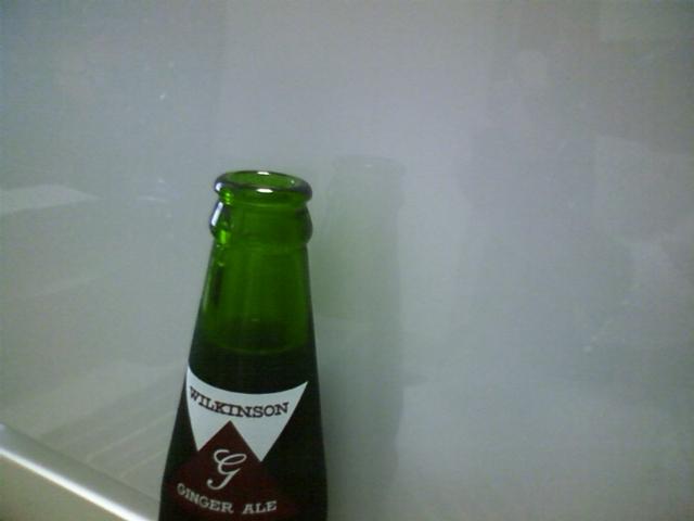 ビンのウィルキンソンジンジャーエールを手に入れた!後味がキツい。