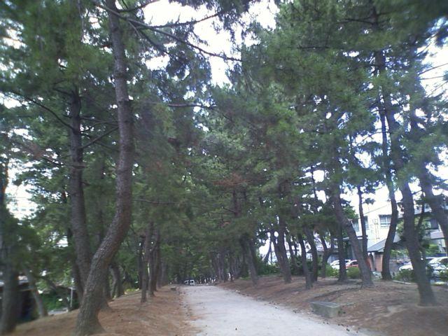 旧長崎街道 江戸時代は 長崎>福岡 だったみたい。小倉と長崎を結ぶ道路。